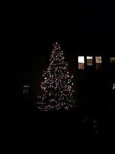 Christmas lights in Albany, NY